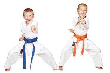 Taekwondo (Mavi Kuşak)