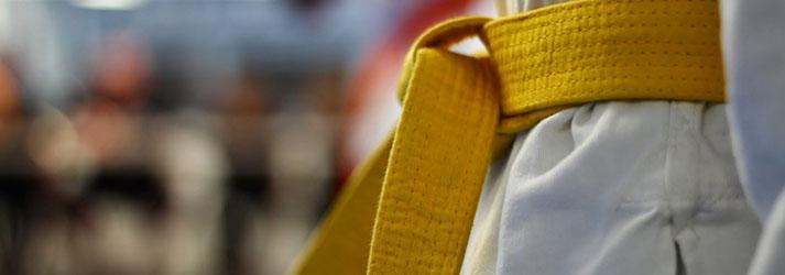 Taekwondo (Sarı Kuşak)