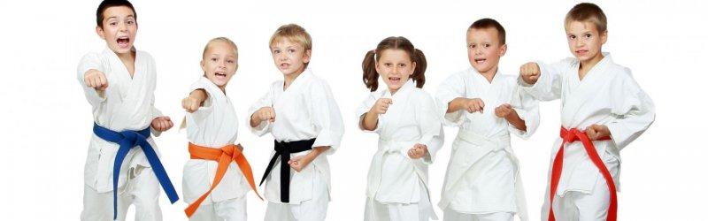 Taekwondo (Yeşil Kuşak)