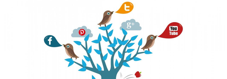 Sosyal Medya Uzmanlık Eğitimi